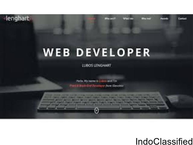 Freelance web developer in pune