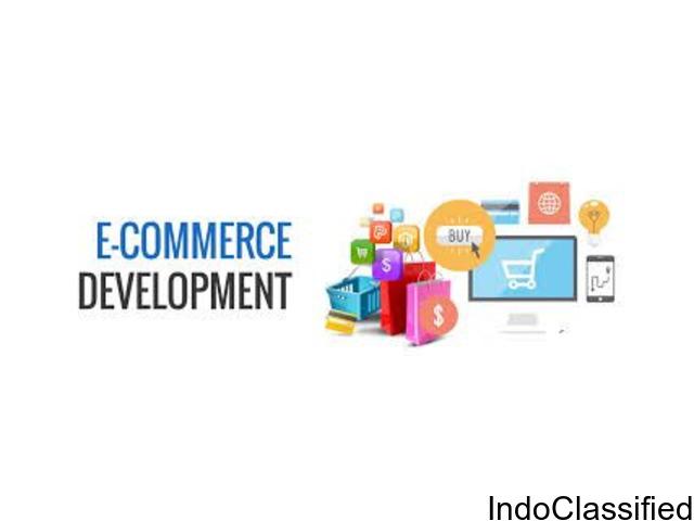 Ecommerce Development Company In India -Webgoogleranking