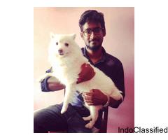 Vige.Dr - Veterinary doctor of pondicherry
