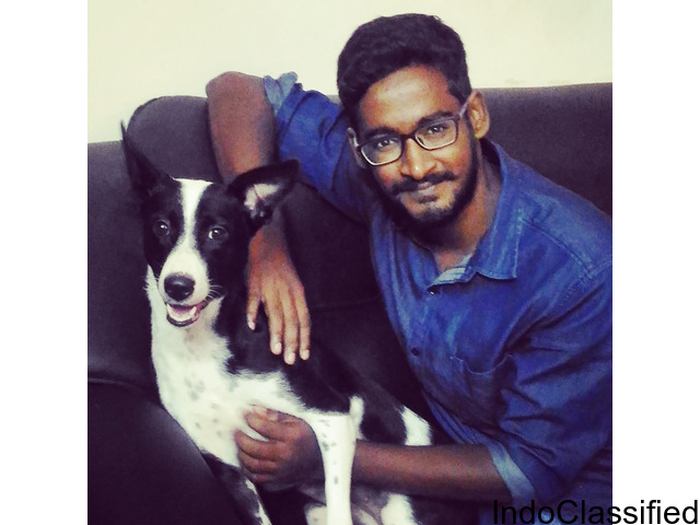 Vige.Dr - Veterinary doctor of pondicherry