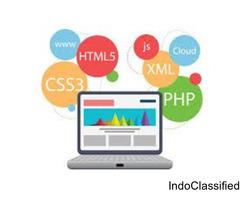 website design company delhi