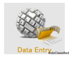 Offline BPO Data Entry Process - Project