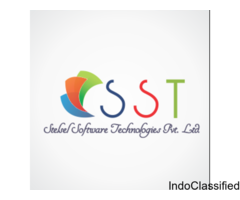 Stelsel Software Technologies Pvt Ltd - Software Product Company in Pune