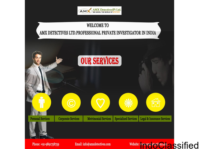 Best and Cheap Private Investigators in Delhi-India || AMX Detectives