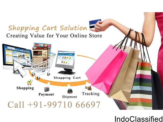 Shopping Cart Development Company in Delhi