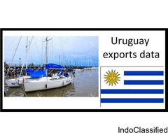 Export data in Uruguay - Development Business Set-up in Uruguay!