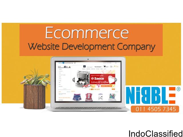 Custom e Commerce Website Development Company
