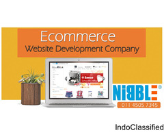 Custom e Commerce Website Development Company