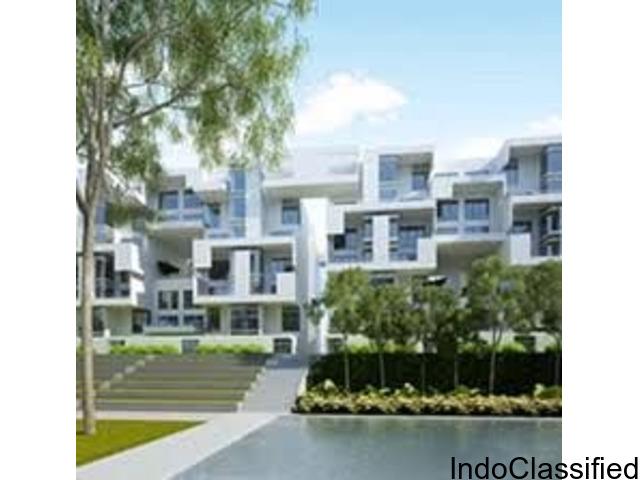 2 bhk Apartment for sale in Rohan Mithila Viman Nagar Pune