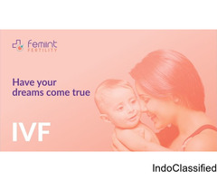 Femiint Health & Fertility