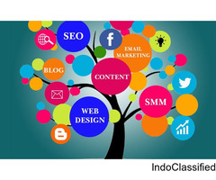 Web Design  & Digital Marketing Training