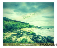 Getting Lost in Kerala and Experience Kumarakom, Kovalam, Cochin, Munnar