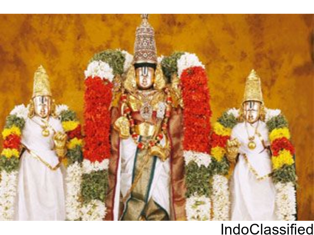 Balaji Travels - Best tirumala packages from chennai