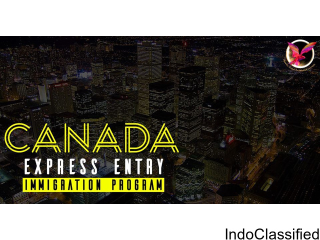 Immigration consultant for Canada