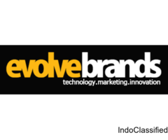 Loyalty program | Loyalty Management Service Delhi NCR - Evolvebrands