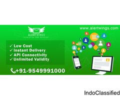 Bulk SMS Service Provider | Bulk SMS Services in India
