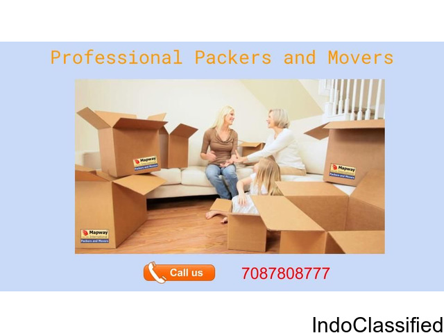 Professional Packers and Movers - Mapway