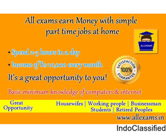internet marketing  home based jobs - work Part time/Full Time
