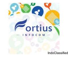 Fortius Infocom Private Limited(BULK SMS SERVICE)
