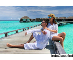Honeymoon Tours And Travels in Pune
