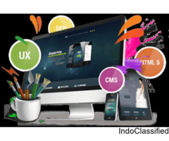Cheap Web Design Company in Chennai| Low Cost Web Design Company Chennai