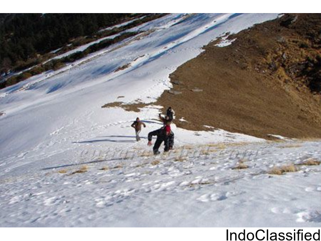 Tour and Travel packages in Chopta at Devariya Guest House