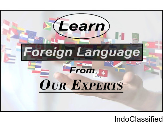 institute of foreign languages in south delhi