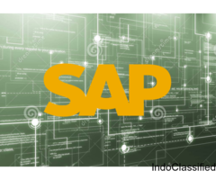best training institute for sap in delhi