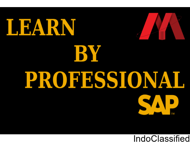 best training institute for sap in delhi