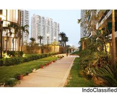 Buy 2 BHK (1385 Sq.ft) Premium Flat at Ace City @ Rs.3295 Per Sq. Ft: Call: 9268-300-600
