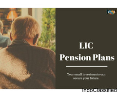 Best LIC Plans In Delhi: Support Your Family Through Insurance Policy
