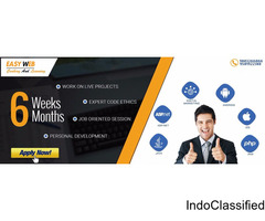 Training in Digital marketing, PHP, Java, Android, .Net, iOS