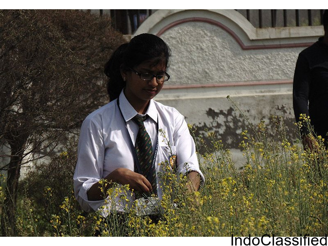TOP B.Sc. AGRICULTURE INSTITUTE IN UTTARAKHAND - RIT ROORKEE