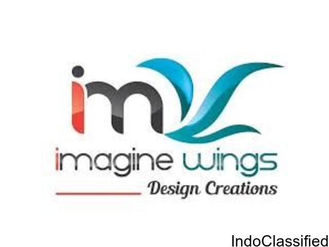 IMAGINE WINGS