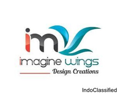 IMAGINE WINGS