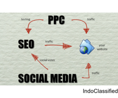 Best SEO Services in Noida | SMO Services in Noida