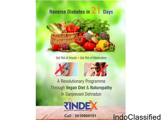 Reverse Diabetes In 21 Days By Sanjeevani Green