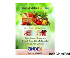 Reverse Diabetes In 21 Days By Sanjeevani Green