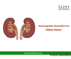 Get Kidney Stones Cured With Homeopathy in Coimbatore