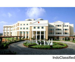 Best IGCSE School in Gurgaon - Suncity School