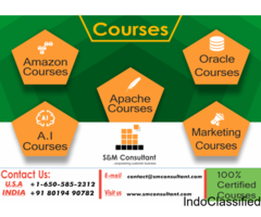 Best Data Science Training Online | Data Science Online Classes | smconsultant