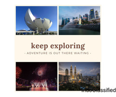Explore Flamingo's Exciting Singapore Tour Packages