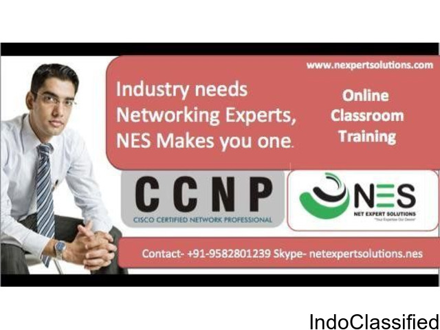 Choose Best CCNP Professional Online Course in Noida