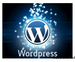Affordable Wordpress Development Services