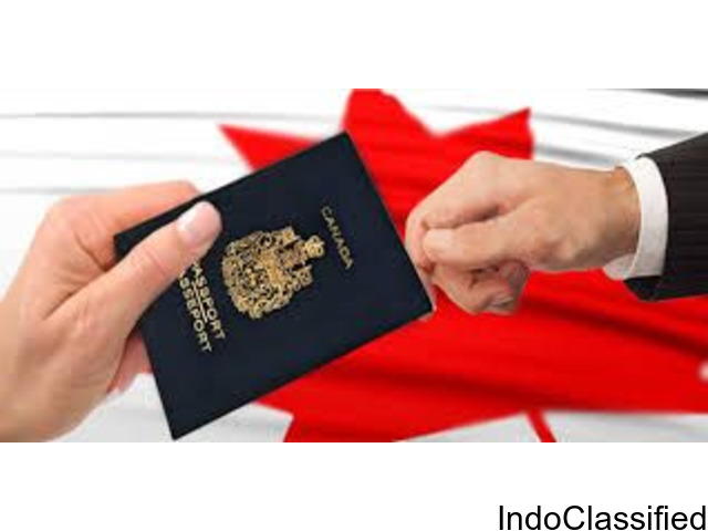 Visa house: Immigration consultants in Delhi with unsurpassed experience