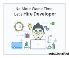 Hire Nopcommerce Developer
