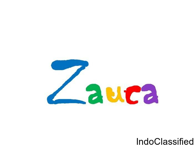 Website Designing Company - Zauca - Get a Website for Just Rs. 3800 Only