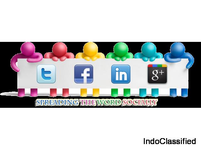 Social Media Marketing Company in Delhi | SMO Company & SEO Company