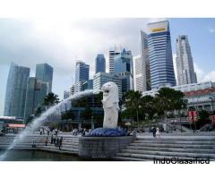 Haven't Explored Singapore Yet? Experience Singapore Tour Packages with Flamingo Travels