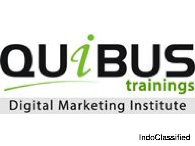 Quibus Trainings Digital Marketing Institute